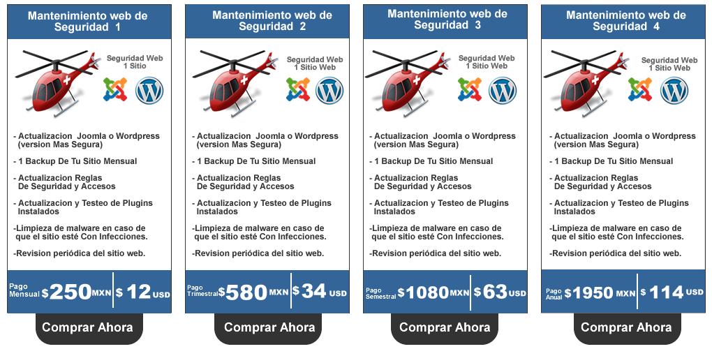 Mantenimiento Web De Seguridad Web Hosting